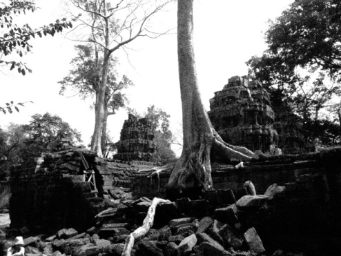 Ta Prohm, the 'Tomb Raider' temple