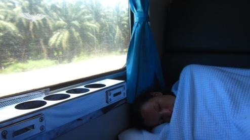 toying with the idea of sleep