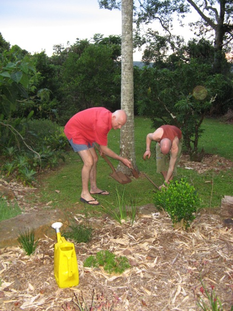 Dad and Richie tending plants in the garden in Dulong - practicing prudence with water